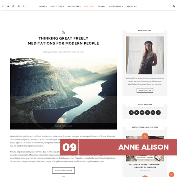 anne-alison-wp-theme